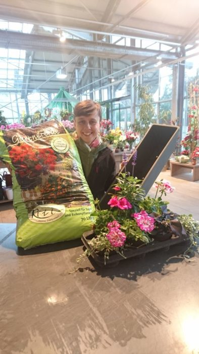 Bepflanzung Ihrer Balkonkästen
